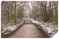 Winter Trail, Print