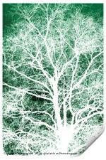 White tree silhouette, Print
