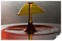 golden water drop, Print