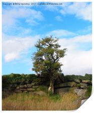 a single tree standing against an old stone wall , Print