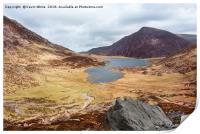 Welsh Mountain walking, Print