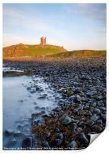 The Castle Ruins, Print