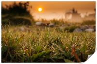 Sunrise on the field, Print