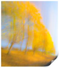 Autum Colours, Print
