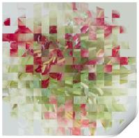 Abstract bouquet, Print