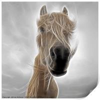 Mystic Horse, Print