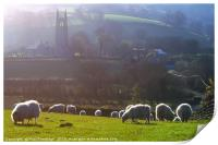 Sheep at Widecombe-in-the-Moor , Print