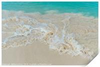 Shiny tropic sea wave on golden beach sand in Arub, Print