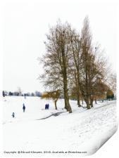 Snow, Print