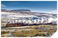Steam and Snow, Print