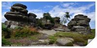 Brimham Rocks, North Yorkshire, England., Print