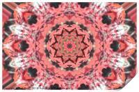 Ruby Star, Print