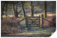 A Gate in Felbrigg Park, Print