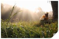Two toys embraced under sun rays, Print