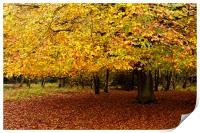 Autumn, Print