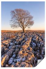 The Lone Tree at Malham, Print