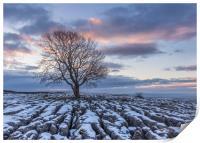 Sunrise at the Lone Tree at Malham, Print