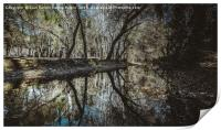 Reflections in the river, Print