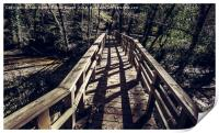 Footbridge leading to the forest, Print