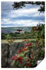Angel of the North from afar, Print