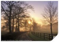 January Sunrise In Hampshire, Print