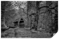 Almondell Country Park Shelter, Print