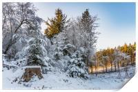 Beecraigs in the Snow, Print
