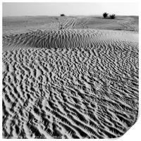 The Arabian desert outside Dubai, Print