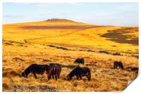 Dartmoor ponies and Higher White Tor, Print