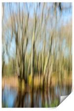 The Tree Rush, Print
