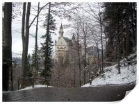 Winter at Neuschwanstein, Print