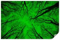 """Root or Branch – """"Green Positive Image"""" , Print"""