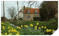 England Springtime , Print