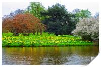 Spring at Hever castle, Print