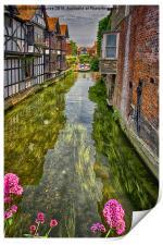 Boating in Oxford City, Print
