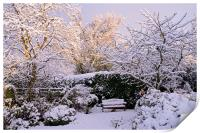Garden in Snow, Print