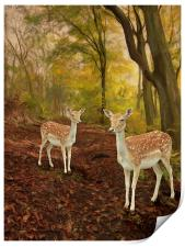 Two Little Deer's, Print