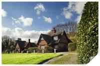 Thatched cottages on Woodbastwick  Village Green, Print
