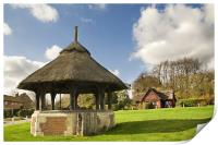Thatched shelter, Print