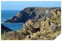 Cornish Cliffs, Print
