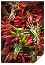 Red Chillies, Print