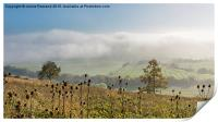 Foggy View from Holly Hill, Print