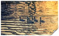 On Golden Pond, Print
