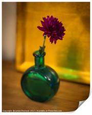 Green Bottle, Print