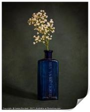 Blue Bottle with White Flowers, Print