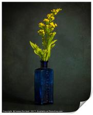 A Bottle with Flower, Print