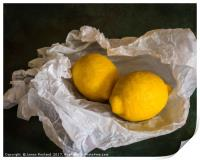 Lemons on Tissue paper, Print