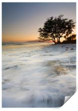 Enveloped by the Sea , Print