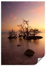Florida Keys Sunset, Print