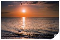 Sunset Fisherman, Print